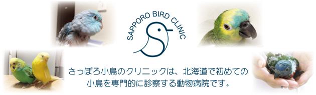 札幌市の小鳥の専門医 さっぽろ小鳥のクリニック